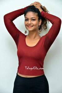 Aditi Myakal Latest Hot Photos