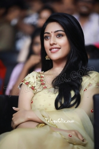 Anu Emmanuel in Saree HD