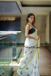 Anu Emmanuel Hot White Saree