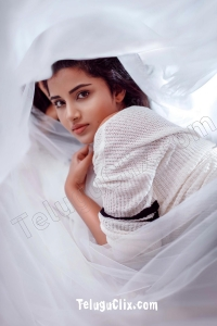 Anupama Parameswaran HD