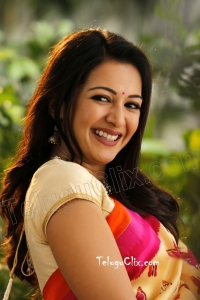 Catherine Tresa in Saree HD Pictures