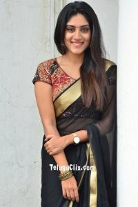 Dhanya Balakrishna in Saree Photos