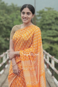 Dhanya Balakrishna in Saree