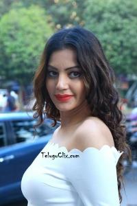 Diksha Panth Latest Pics