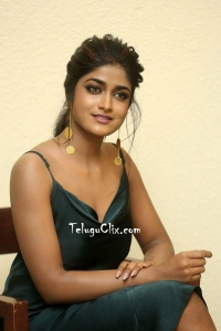 Dimple Hayati at Valmiki Success Meet