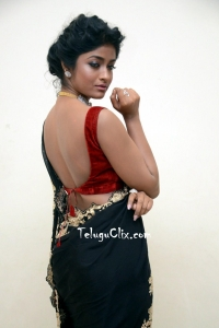 Dimple Hayati Saree Photos