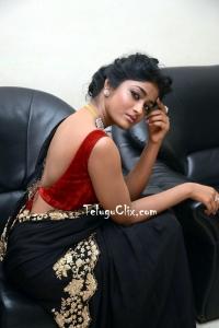 Dimple Hayati Saree Photos