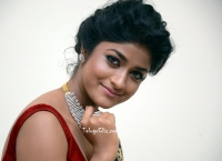 Dimple Hayati at Valmiki Pre Release