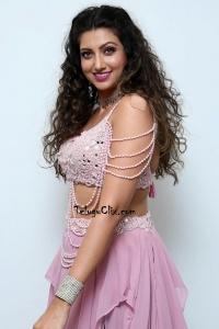 Hamsa Nandini HD Pics