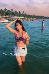 Hamsa Nandini in Bikini Hot HQ