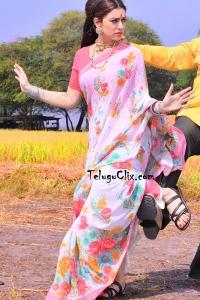 Hansika in Saree HD NTR Kathanayakudu