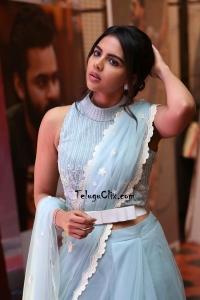 Kalyani Priyadarshan Saree Photos HQ