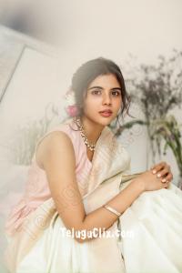 Kalyani Priyadarshan in Saree HD