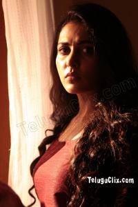Madhu Shalini HD in Pancharaaksharam