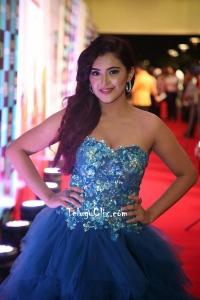 Malvika Sharma at Siima Awards 2019 Red Carpet