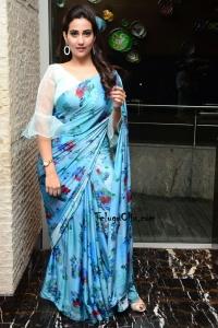 Manjusha Saree Photos