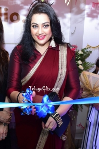 Meena in Saree