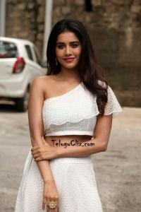Nabha Natesh HD Photos