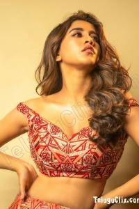 Nabha Natesh 2020 Photoshoot HD