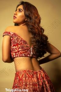 Nabha Natesh UHD