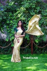 Nabha Natesh in Saree HD