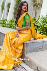 Nabha Natesh in Saree Ultra HD