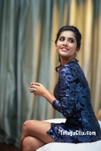 Nabha Natesh Latest HD Photos