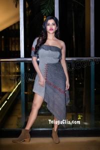 Nabha Natesh New HD Pics