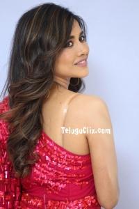 Nabha Natesh HD Pics