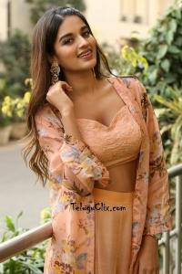 Nidhhi Agerwal HD Photos