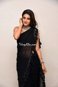 Nidhhi Agerwal in Saree Pics