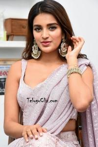 Nidhhi Agerwal Saree Photos HQ
