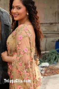 Nikesha Patel HD in Saree