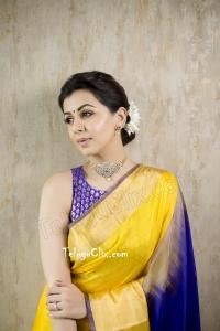 Nikki Galrani in Saree HD Photos