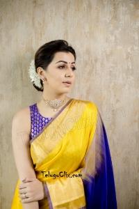 Nikki Galrani Saree HD Photos