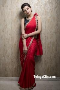 Nikki Galrani in Saree HD