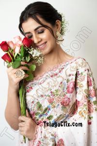 Nikki Galrani in Saree Ultra HD