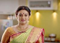 Pavitra Lokesh in Saree images
