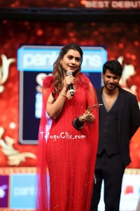 Payal Rajput at Siima Awards 2019