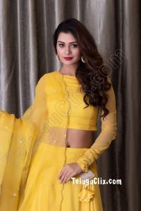 Payal Rajput Navel HD