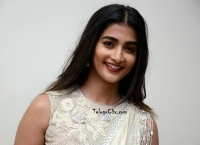 Pooja Hegde Valmiki Pre Release
