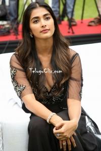 Pooja Hegde Latest HD Pics