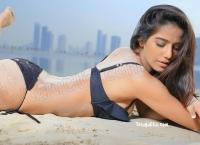 Poonam Pandey Latest HD Photos