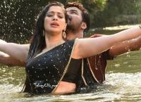 Raai Laxmi Ultra HD in Saree Hot Naga Kanya