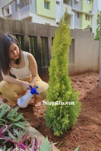 Raashi Khanna Green india Challenge