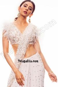 Rakul Preet Singh in Saree Navel Ultra HD