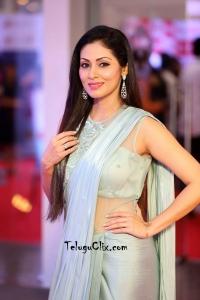 Sadha in Saree