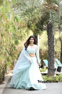 Sai Dhanshika Latest HD Navel Photos