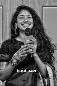 Sai Pallavi Navel in Saree HD