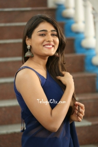 Shalini Pandey in Saree
